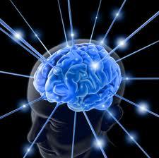 intelejensi otak