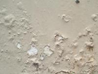 Mengatasi permukaan dinding yg lembab