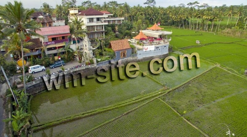 Dijual hostel di kawasan wisata Ubud-Bali, strategis dekat pusat pariwisata ubud.